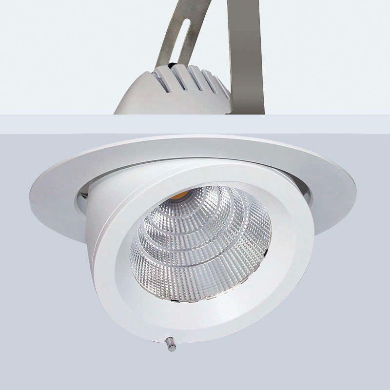Downlight Led PRICKLUX TUBE 50W