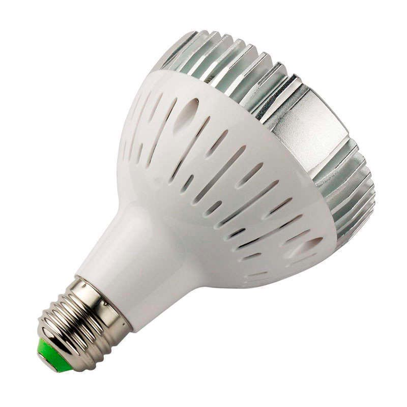 LED PAR30, E27, 30W, PLANT GROW
