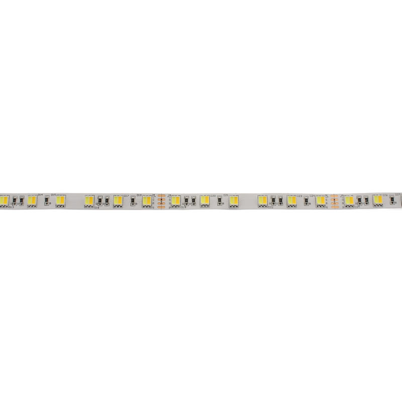 Tira LED Blanco Dual SMD5050, DC24V, 5m (120 Led/m) - IP20