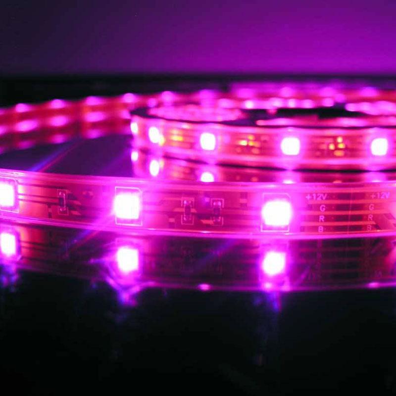 Tira LED SMD5050, DC12V, 5m (60 Led/m), ROSA - IP20