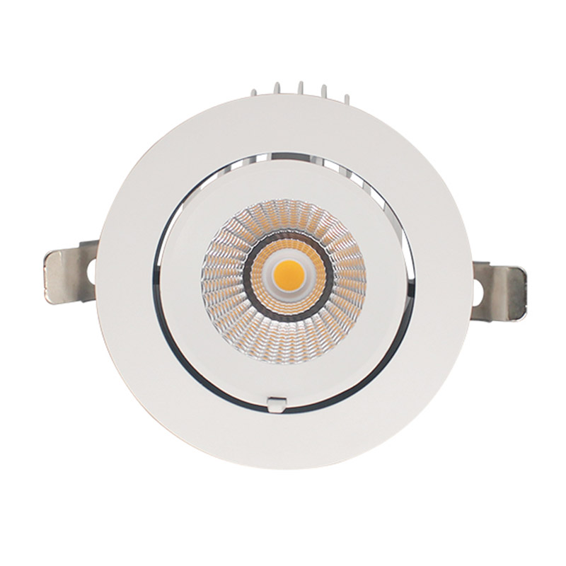Downlight LED Pricklux 25W
