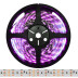 Tira LED SMD5050, DC24V, 5m (120 Led/m), ROSA - IP67, Rosa/Magenta