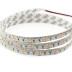 Tira LED Monocolor EPISTAR SMD3014, DC24V, 5m (240 Led/m) - IP65, Blanco frío