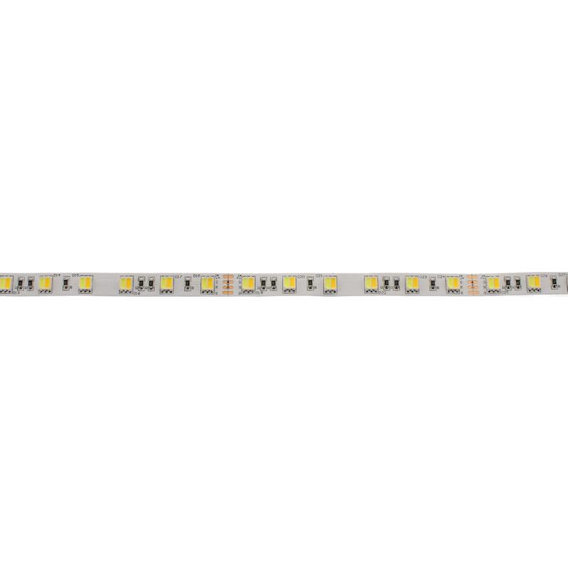 LED STRIP SMD5050, DC24V, 5m (120Led/m) - IP20