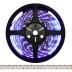 Tira LED UV Ultravioleta SMD3528, DC24V, 5m (240 Led/m) - IP20, Luz ultravioleta