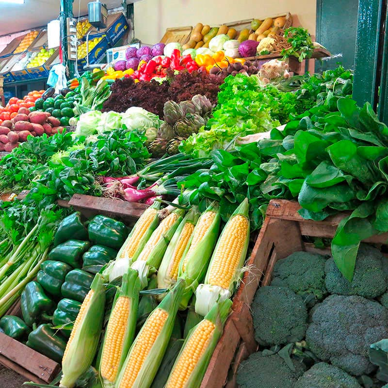 Campana E27, 40W, Vegetales